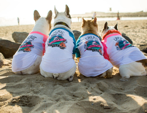 Help Animals in Need with a Team Cherie T-Shirt!
